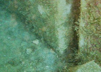 Underwater-survey-of-marine-structures