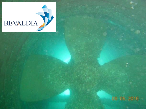 Underwater hull cleaning Lome Togo