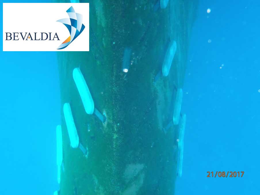 Underwater hull cleaning Lavrio, Greece BEVALDIA