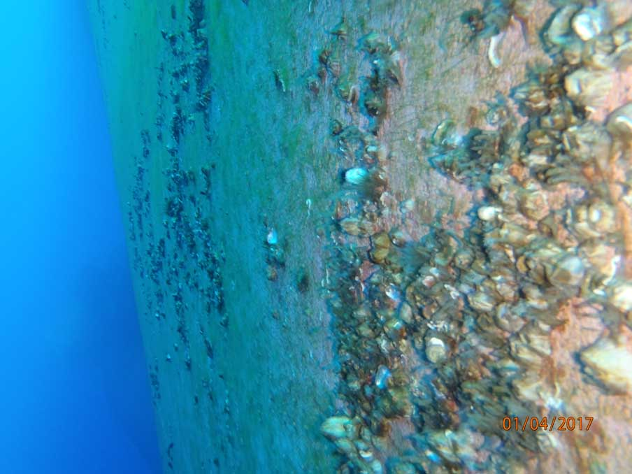 Diving Services Company In Kaloi Limenes - Greece
