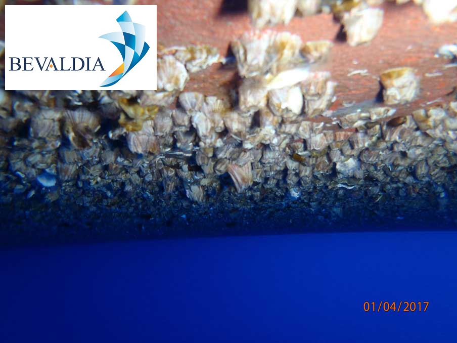 Underwater hull cleaning Crete, Greece BEVALDIA