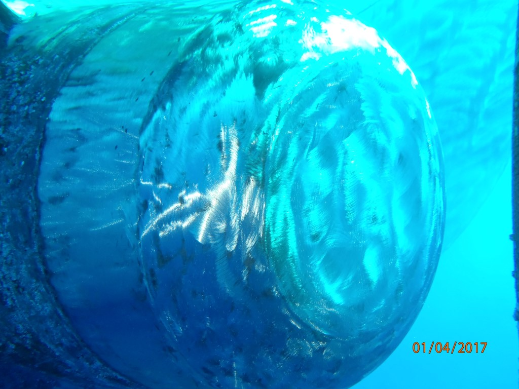 Underwater-propeller-polishing