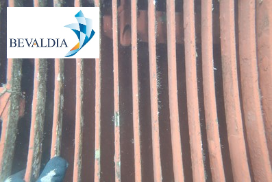 Underwater hull cleaning Abidjan, Ivory Coast BEVALDIA PSOMAKARA