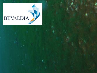 Underwater hull cleaning Limassol, Cyprus BEVALDIA PSOMAKARA