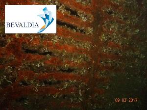 Underwater hull cleaning Volos, Greece BEVALDIA PSOMAKARA