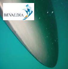 Underwater propeller polishing Tampico, Mexico BEVALDIA PSOMAKARA