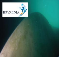 Underwater propeller cleaning Tampico, Mexico BEVALDIA PSOMAKARA