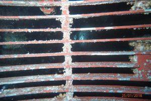 IN WATER SEA CHESTS CLEANING (BEVALDIA & PSOMAKARA)