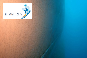 UNDERWATER HULL CLEANING PIRAEUS AND LOME AND GLOBALLY - BEVALDIA - PSOMAKARA 12