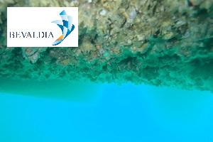 UNDERWATER HULL CLEANING PIRAEUS AND LOME AND GLOBALLY - BEVALDIA - PSOMAKARA 3