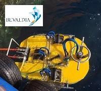 Underwater hull cleaning Lome Piraeus worldwide BEVALDIA