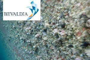 In Water Hull Cleaning Machine (BEVALDIA-PSOMAKARA) 2