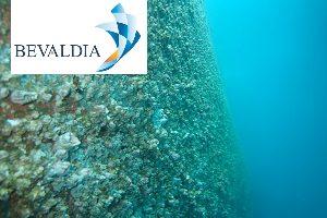 In Water Hull Cleaning Machine (BEVALDIA-PSOMAKARA)