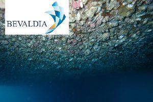 In Water Hull Cleaning Machine (BEVALDIA-PSOMAKARA) 4