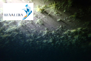 UNDERWATER HULL CLEANING LAS PALMAS SPAIN BEVALDIA 17