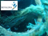 UNDERWATER REMOVAL OF ENTANGLEMENTS AND FOREIGN BODIES BEVALDIA-PSOMAKARA 1