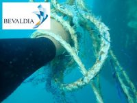 UNDERWATER REMOVAL OF ENTANGLEMENTS AND FOREIGN BODIES BEVALDIA-PSOMAKARA 2