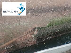 ABOVE WATERLINE CLEANING BEVALDIA